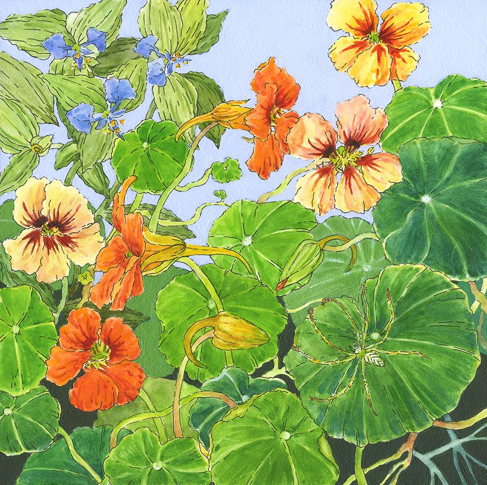 Nasturtiums and Garden Spider by Lisa Skyheart Marshall