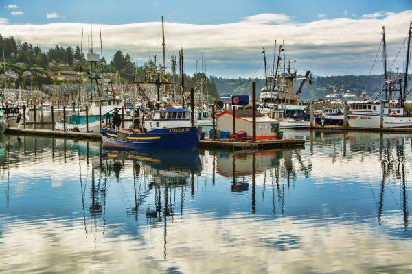 Darlene Roker Newport Boats Photo On Aluminum 16x24 2