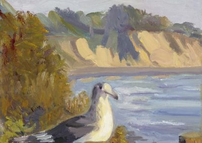 Katherine Murray-Morse_Seagull-Lookout Park_Oil on Canvas_15.5Hx12.5W