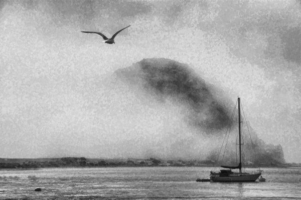 Darlene Roker Flying High. Photograph on aluminum. 16x24.